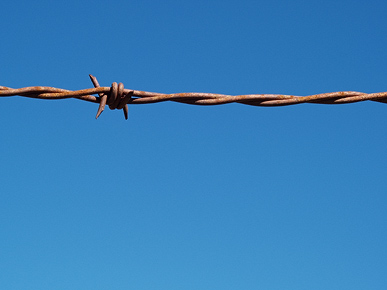 Image of barbed wire, Otago, South Island, New Zealand